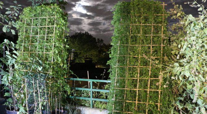 Balkon bei bewölkter Nacht mit Blick in den Nachthimmel