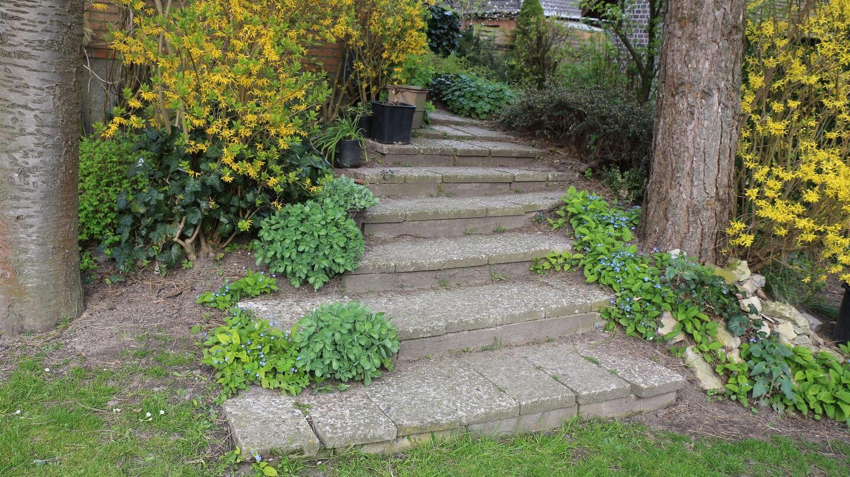 Die Faultier- Gartenplanung