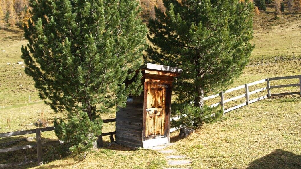 Plumps- Bioklo auf der Almwiese zwischen zwei Bäumen