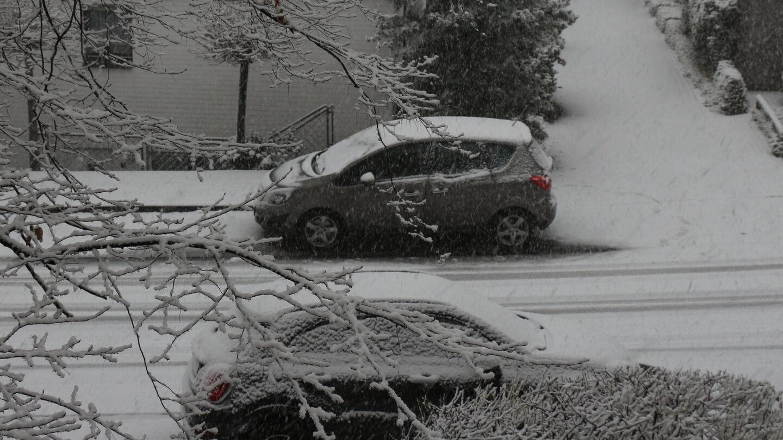 Schnee räumen - bloß kein Salz